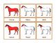 Parts of a Horse Montessori Three Part Vocabulary Cards - color and blackline