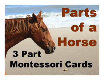 Parts of a Horse Montessori Three Part Vocabulary Cards - color and blackline