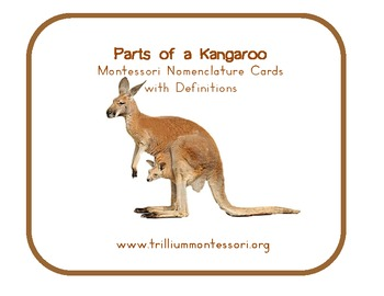 Parts of a Kangaroo- Montessori Nomenclature Cards with Definitions