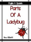 Parts of a Ladybug-Bilingual