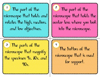 Parts of a Microscope Game