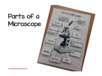 Parts of a Microscope Foldable-PowerPoint ONLY