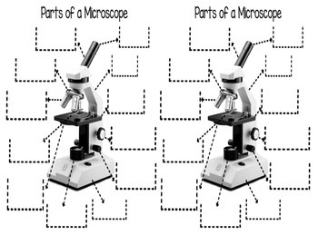 Parts of a Microscope Foldable-Unlabeled