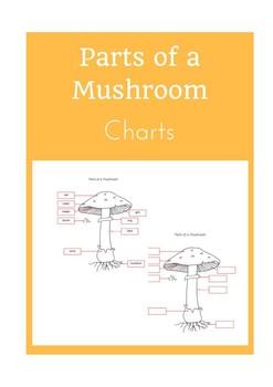 Parts of a Mushroom Charts