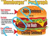 Parts of a Paragraph - Hamburger Poster