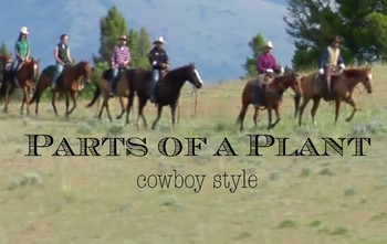 Parts of a Plant Bundle - You'll love funny western-themed cowboy video - (L)
