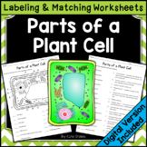 Parts of a Plant Cell - Labeling & Matching | Printable & Digital