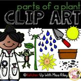 Parts of a Plant Clip Art