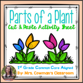 Parts of a Plant - Cut and Paste Activity Sheet