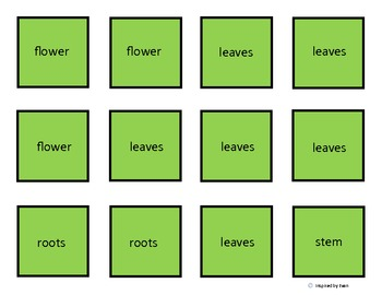 Parts of a Plant Cut and Paste Word Labels for Autism