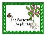 Parts of a Plant - English/Spanish