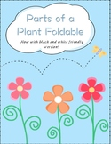 Parts of a Plant Foldable!