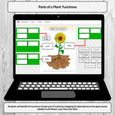 Parts of a Plant - Functions: Google Classroom Digital Activity