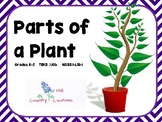 Parts of a Plant, Grades K, 1, 2  (Stem, Root, Leaf, flower, fruit)  TEKS/NGSS