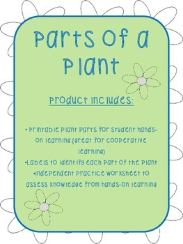 Parts of a Plant {Hands-On}