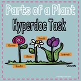 Parts of a Plant Hyperdoc