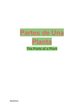 Parts of a Plant (In Spanish)