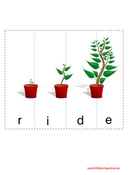 Parts of a Plant Printable Packet