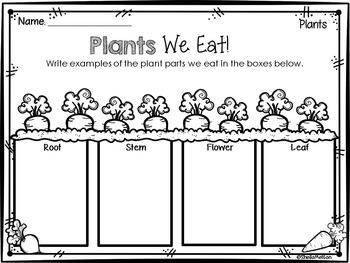 parts of a plant by sheila melton teachers pay teachers. Black Bedroom Furniture Sets. Home Design Ideas