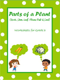 Parts of a Plant- Roots, Stem, Leaf, Flower, Fruit & Seed