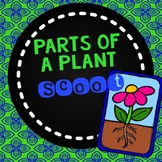 Parts of a Plant Scoot