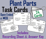 Parts of a Plant Task Cards: Stem, Seeds, Roots, Stamen, Petal Anther Pistil etc