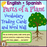 Parts of a Plant Trading Card Activities and Posters