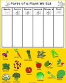 Parts of a Plant We Eat- Class Sort- Smart Notebook
