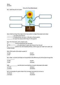 Free Printable Parts of a Plant Worksheets   Itsy Bitsy Fun furthermore Leaning Parts Of Plant And Flower For Kids Stock Vector further Parts of a Plant Worksheets moreover Plant Parts   TeacherVision further Parts of a Plant by ChocolateonGirl   Teaching Resources   Tes moreover Flower Parts Diagram Worksheet besides The parts of a plant   ESL worksheet by Ja  att moreover Labelling A Plant Worksheet   Primary Resource additionally plants and seeds worksheets further Parts of a Plant Worksheets as well NTTI Lesson  SEE HOW THEY GROW  PLANTS AND THEIR PARTS worksheet additionally Parts Of A Plant Worksheet   Teachers Pay Teachers also Parts of a Plant 2 Worksheet   Elace moreover  in addition  together with Plant Parts Worksheet   Have Fun Teaching. on parts of a plant worksheet