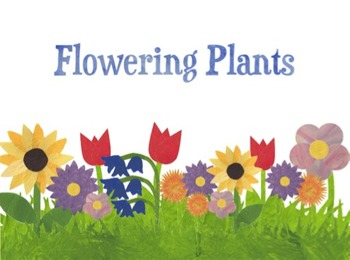 Parts of a Plant and Plant Jobs Bundle