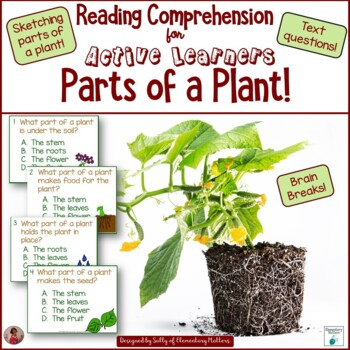 Parts of a Plant for Active Learners