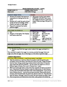 Parts of a Plant part 2 - 5 E's Lesson