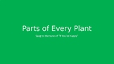 Parts of a Plant song