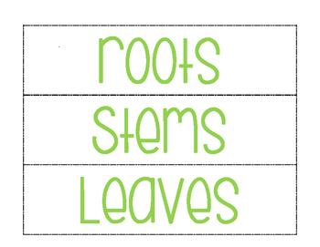 Parts of a Plant (sort & paste)