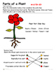 Plants - Parts of a Plant -  Plant Introduction Reading and Diagram