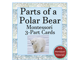 Parts of a Polar Bear - Montessori 3-Part Cards