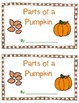 Parts of a Pumpkin