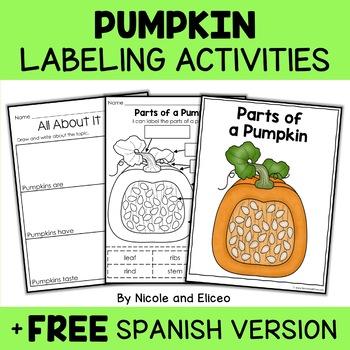 Vocabulary Activity - Parts of a Pumpkin