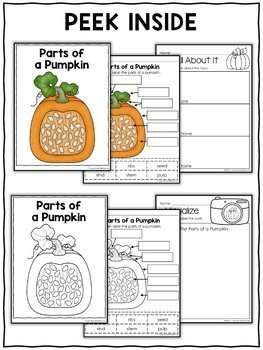 Parts of a Pumpkin Activities