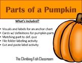 Parts of a Pumpkin Mini Unit