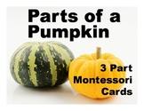 Parts of a Pumpkin Montessori Three Part Vocabulary Cards - color and blackline