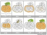 Parts of a Pumpkin PowerPoint
