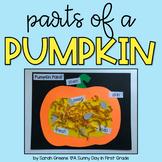 Parts of a Pumpkin Craft!