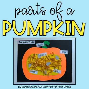 Parts Of A Pumpkin Teaching Resources Teachers Pay Teachers