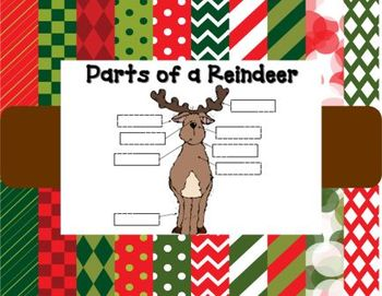 Parts of a Reindeer
