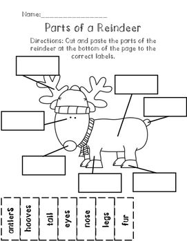 Parts of a Reindeer