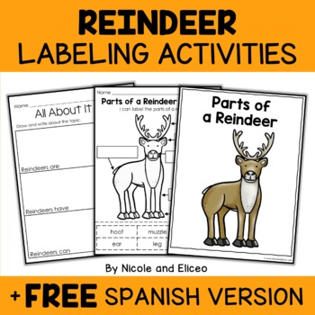 Vocabulary Activity - Parts of a Reindeer