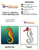 Parts of a Seahorse 3-Part-Matching printable