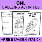 Parts of a Snowy Owl Activities
