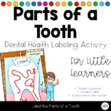 Dental Health Label the Parts of a Tooth Activity